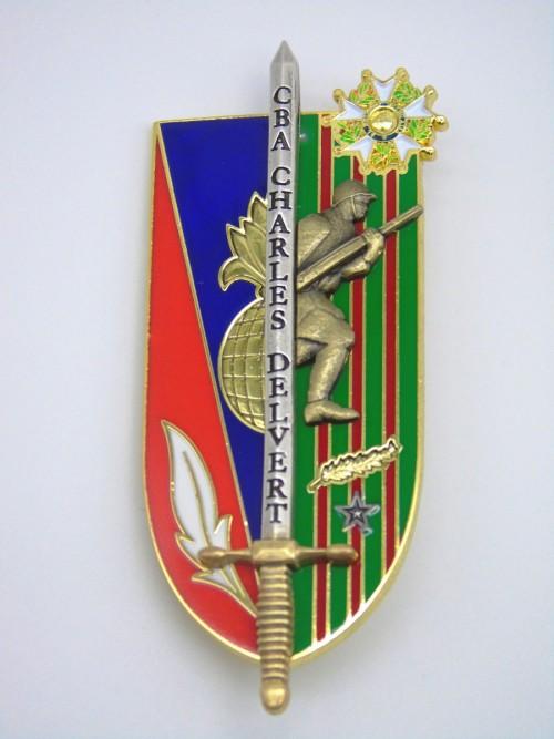 Insigne ESM4 colonel Delvert